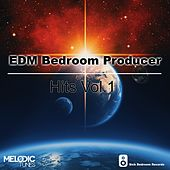 EDM Bedroom Producer Hits, Vol. 1 - EP by Various Artists