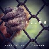 Freedom (feat. Solara) by Danny Darko