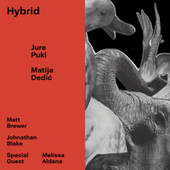 Hybrid (feat. Matt Brewer & Johnathan Blake) by Matija Dedić