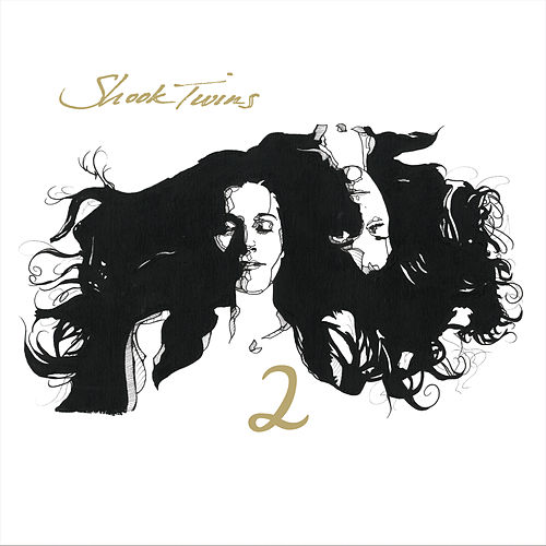 2 by Shook Twins