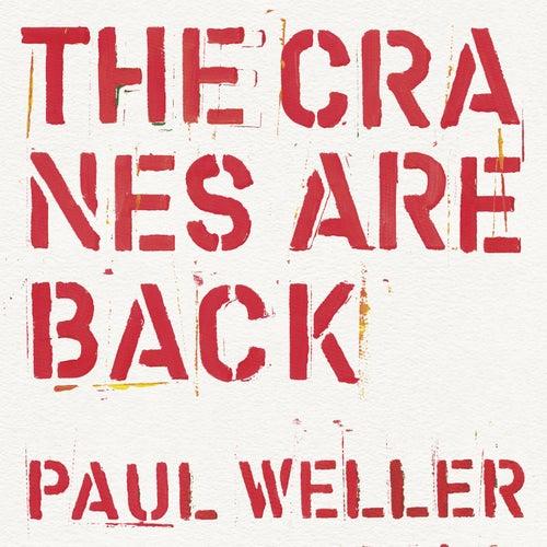 Paul Weller: