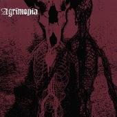 Agrimonia by Agrimonia