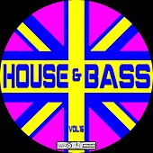 House & Bass, Vol. 16 - EP by Various Artists