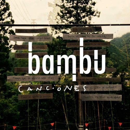 Haz de la Verdad by Bambu