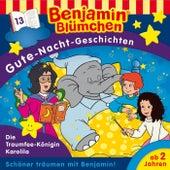 Gute Nacht Geschichten - Folge 13: Die Traumfee-Königin Karolila von Benjamin Blümchen