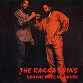 Play & Download Reggae Owes Me Money by Ragga Twins | Napster