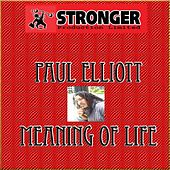 Meaning of Life by Paul Elliott