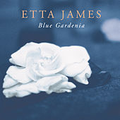Play & Download Blue Gardenia by Etta James | Napster
