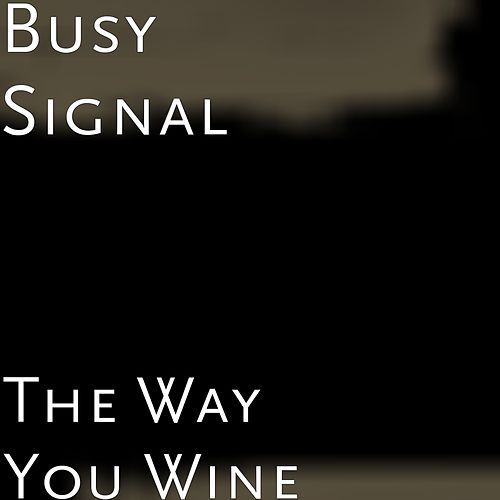 The Way You Wine by Busy Signal
