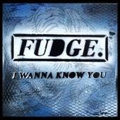 I Wanna Know You by Fudge
