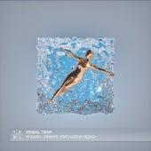 Dreams (feat. Alesha Nejad) by Wizard