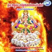Sri Swamy Daddisuranayakara by Various Artists