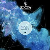 Cold Water by DJ Roody