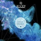 Cold Water de DJ Roody