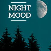 Night mood by Various Artists