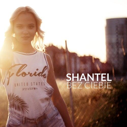 Bez Ciebie by Shantel