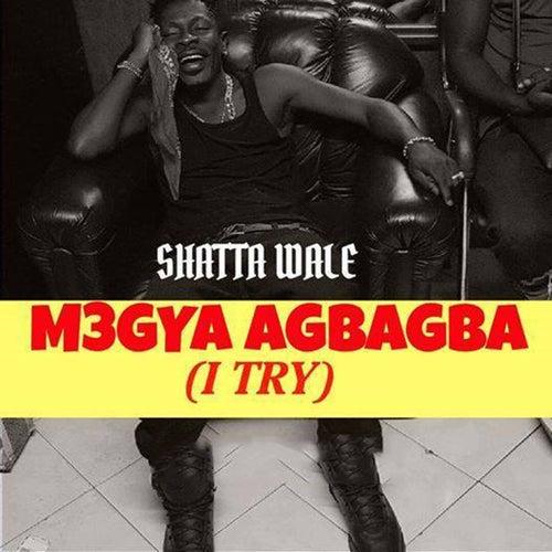 M3gya Agbagba (I Try) de Shatta Wale