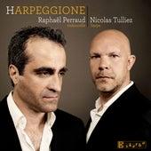 Harpeggione by Raphaël Perraud