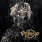 A Step Beyond Divinity by Embryo