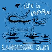 Life Is Confusing by Langhorne Slim
