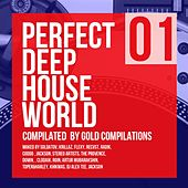 Perfect Deep House World 01 - EP by Various Artists
