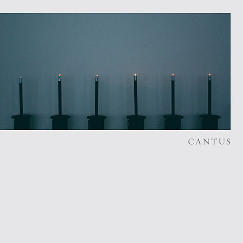 Hodie by Cantus