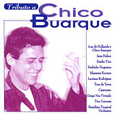 Tributo a Chico Buarque by Various Artists