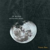 20 Million Different Skies by Tristen Beer