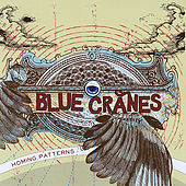 Homing Patterns by Blue Cranes