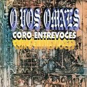 O vos omnes (Remasterizado) by Coro Entrevoces
