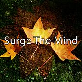 Surge The Mind by Massage Tribe