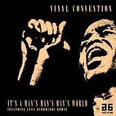 It's a Man's Man's Man's World by Vinyl Convention