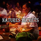 Natures Secrets by Massage Therapy Music