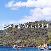 Soothing Natures Mind by Massage Therapy Music