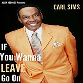 If You Wanna Leave Go On by Carl Sims