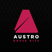 Austro House Hits 2017 by Various Artists