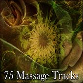 75 Massage Tracks by S.P.A