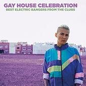 Gay House Celebration by Various Artists