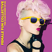 Female Fun Collective by Various Artists