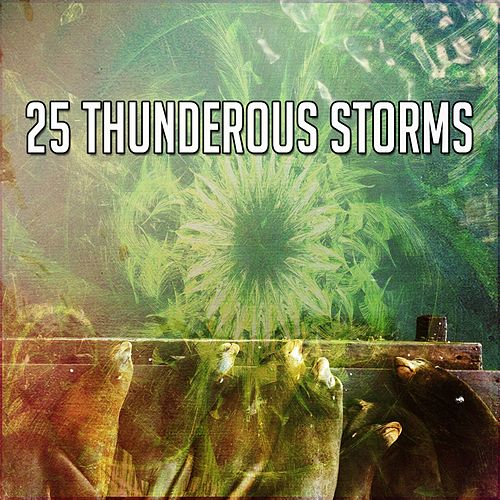 25 Thunderous Storms by Thunderstorm