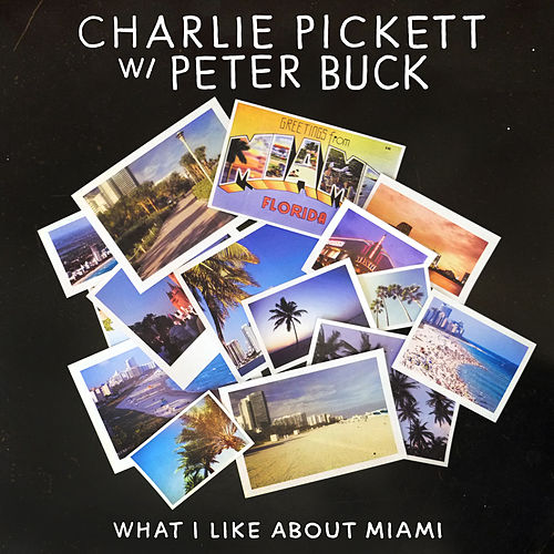 What I Like About Miami by Charlie Pickett