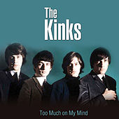 Too Much on My Mind by The Kinks
