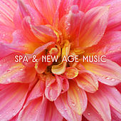 Spa & New Age Music – Relaxing Music Therapy for Spa Treatments, Wellness Hotel, Nature Sounds by New Age