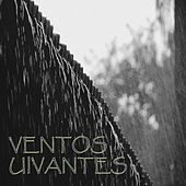 Ventos Uivantes by Vida