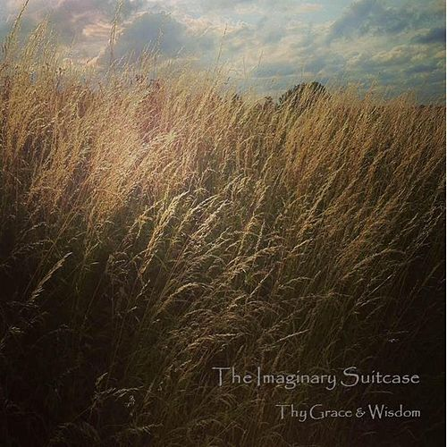 Thy Grace & Wisdom by The Imaginary Suitcase