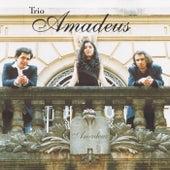Amadeus by Trio Amadeus