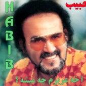 Akheh Azizam Chi Misheh by Habib