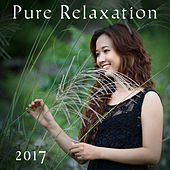 Pure Relaxation 2017 – Nature Sounds, Relaxing Music, Deep Meditation, Rest, Relief Stress, Zen by Chinese Relaxation and Meditation