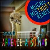 Aprende a Soñar (Mucho Mistrust Remix) by Jose