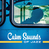 Calm Sounds of Jazz – Relaxing Chilled Jazz, Music to Rest, Background Jazz to Calm Mind, Mellow Sounds by Jazz Lounge